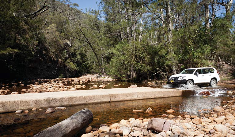Wadbilliga Crossing, Wadbilliga National Park. Photo: Lucas Boyd/DPIE
