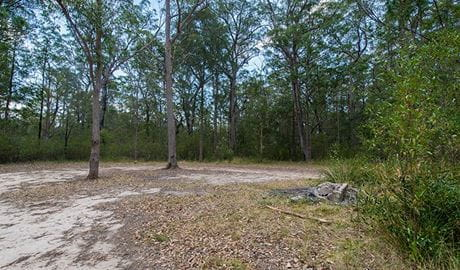 Cockatoo picnic area, Wallingat National Park. Photo: John Spencer