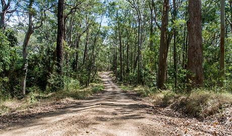 Double Wharf to Whoota Whoota cycle loop, Wallingat National Park. Photo: John Spencer