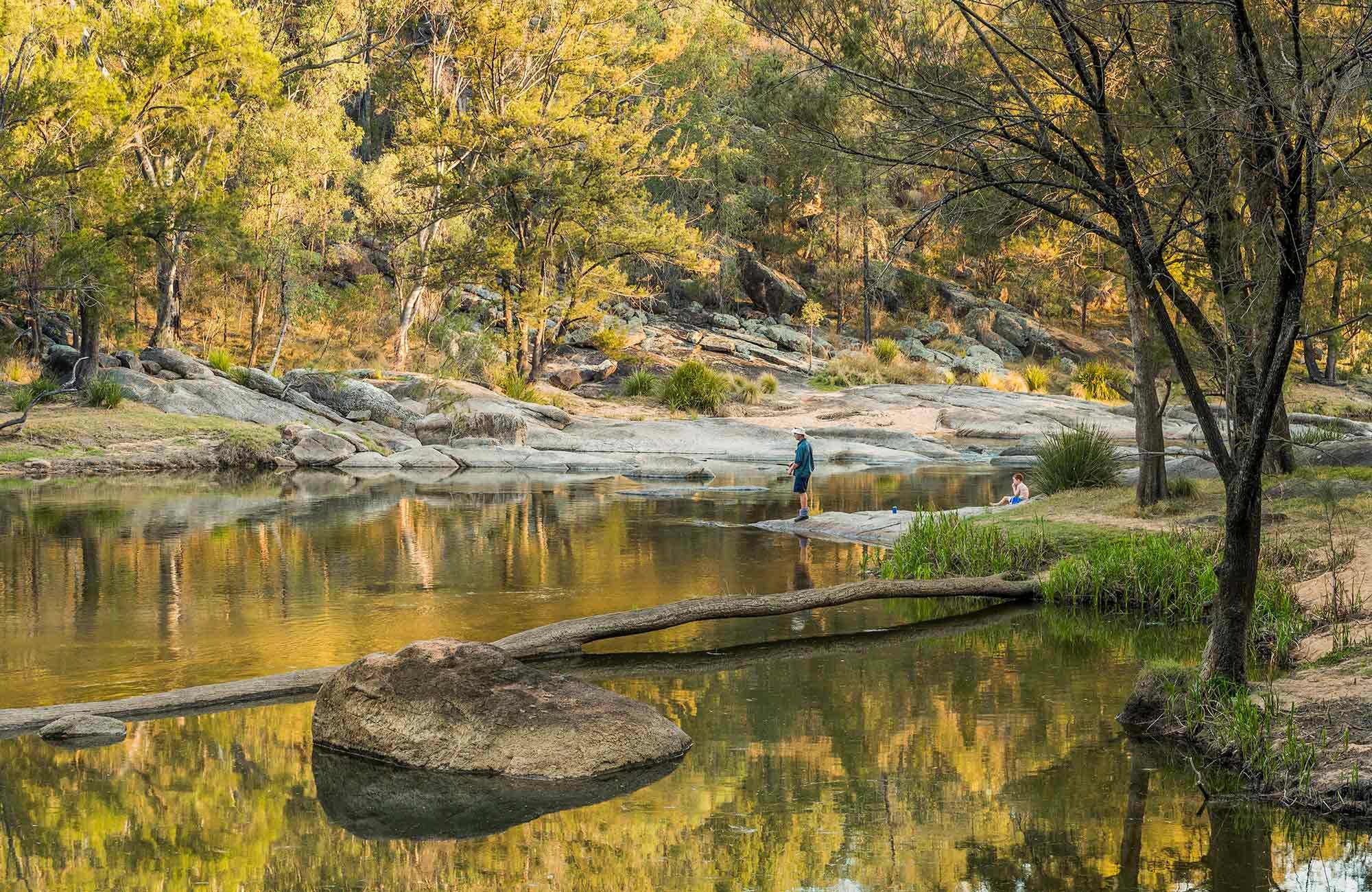 Namoi River hero, Warrabah National Park. Photo: David Young