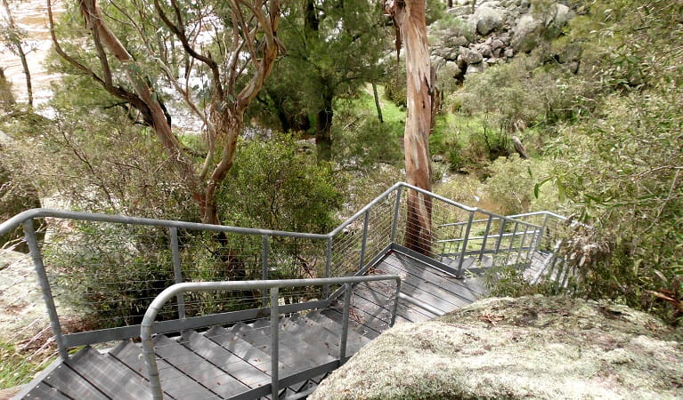 Stairs down to the river at Muluerindie, Warrabah National Park. Photo: Sam Doak/OEH