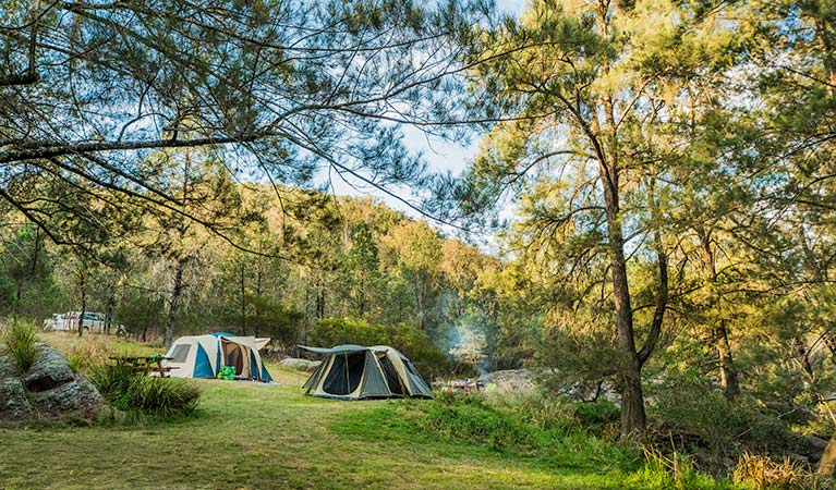 Campgrounds, Warrabah National Park. Photo: David Young