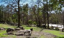 Warrabah campground and picnic area tents, Warrabah National Park. Photo: David Young