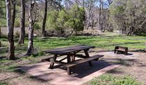 Warrabah campground and picnic area, Warrabah National Park. Photo: David Young