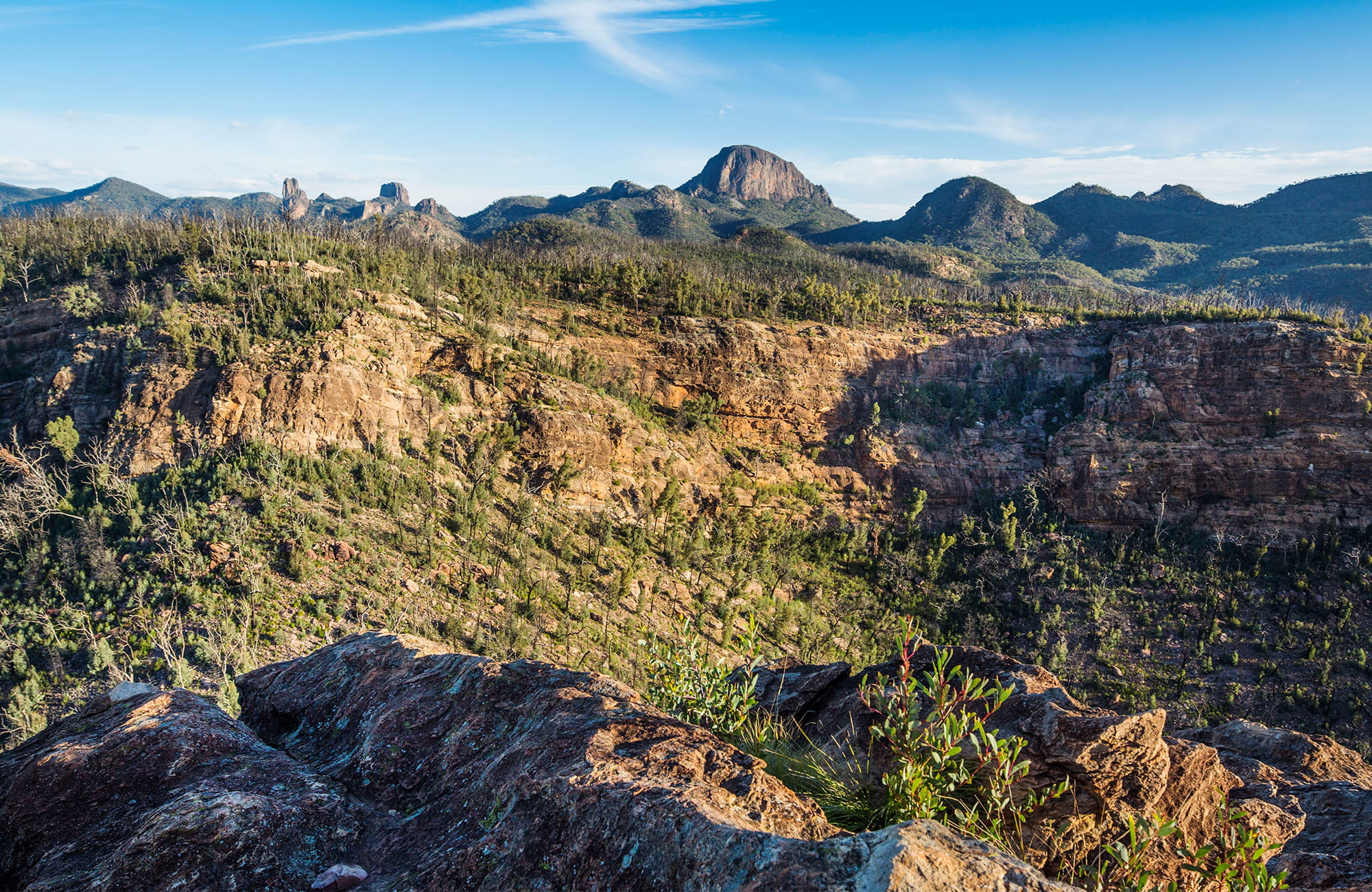 Wide view of Warrumbungles' rocky crags, spires and domes, with Bluff Moutain at centre. Photo: Simone Cottrell/OEH.