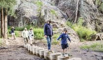A family walking on stepping stones along Burbie Canyon walking track in Warrumbungle National Park. Photo: Simone Cottrell/RBG