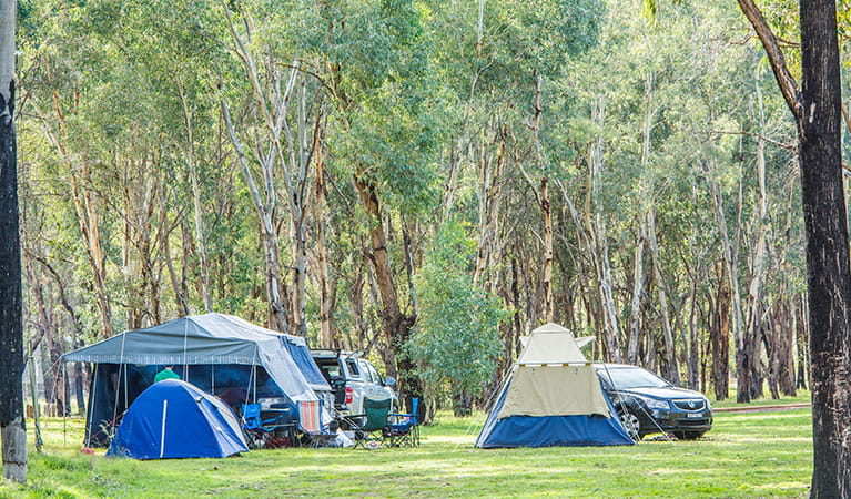 Camp Blackman, Warrumbungle National Park. Photo: Rob Cleary