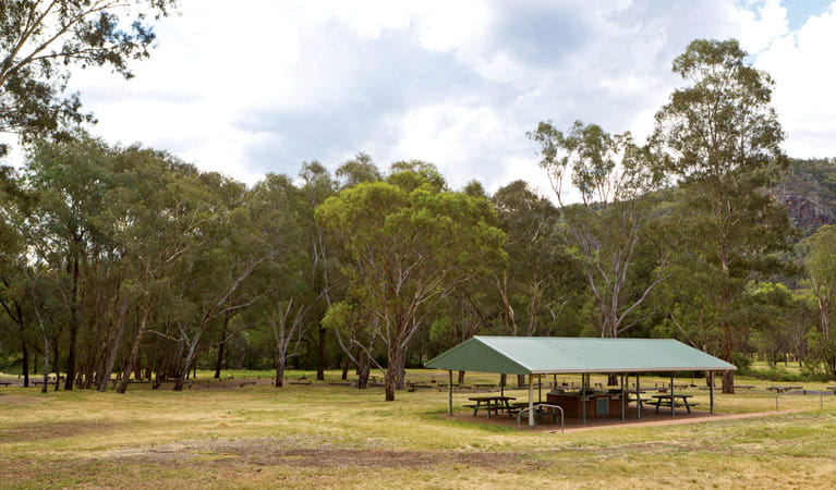 Facilities at Camp Blackman, Warrumbungle National Park. Photo: Rob Cleary