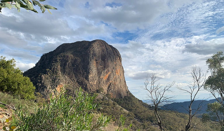 View of Bluff Mountain set in bushland on a partly cloudy day. Photo: Eveline Chan © Eveline Chan