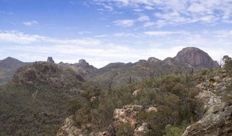 Sweeping view of volcanic peaks and spires from Fans Horizon lookout on Balgatan Mountain, in Warrumbungle National Park. Photo: Leah Pippos © DPIE