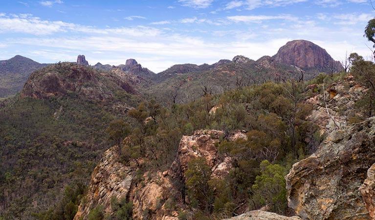 Views of rocky crags, spires and domes in Warrumbungle National Park. Photo: Leah Pippos/OEH.