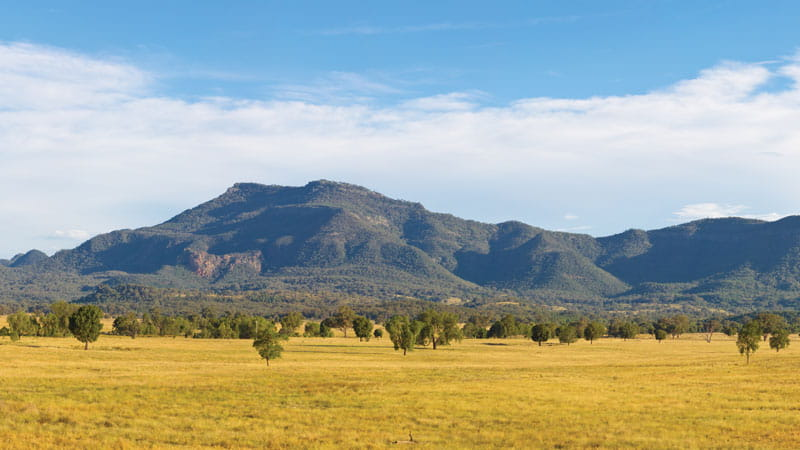 Golden Plains, Warrumbungle National Park. Photo: Rob Cleary