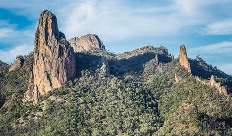 View of volcanic spires and domes emerging from dry forest in Warrumbungle National Park. Photo: Simone Cottrell © RGB
