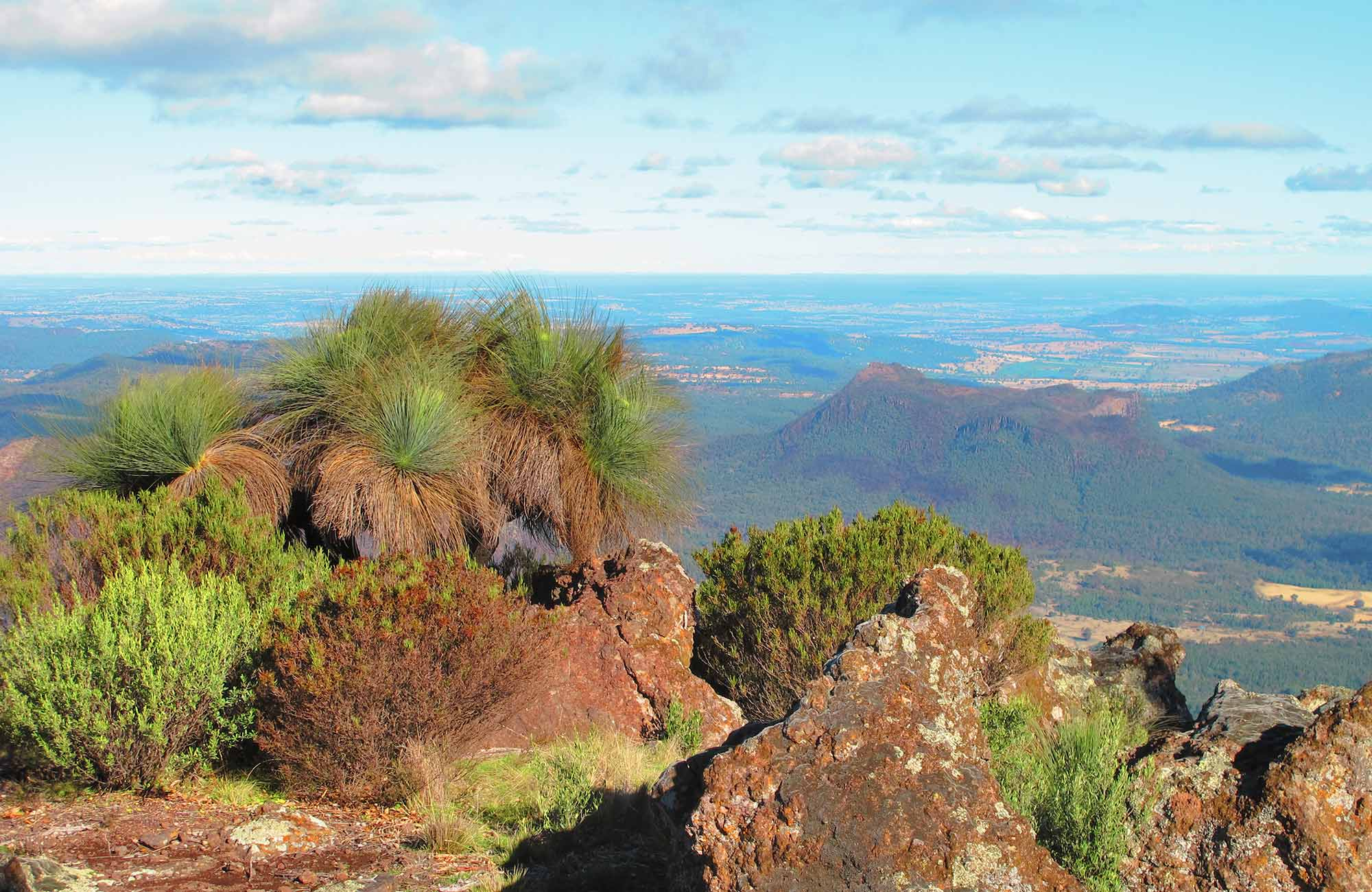Mount Exmouth walking track, Warrumbungle National Park. Photo: Sue Brookhouse