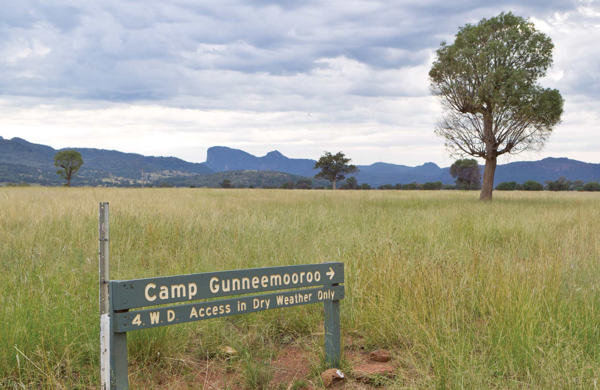 Camp Gunneemooroo, Warrumbungle National Park. Photo: Rob Cleary/NSW Government