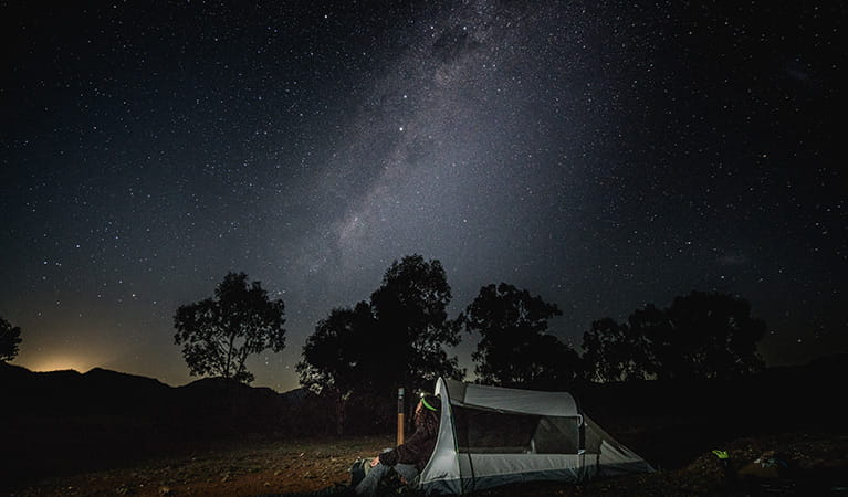 Woman wearing a head torch sits beside her tent under the stars in Warrumbungle National Park. Photo: Robert Mulally/OEH