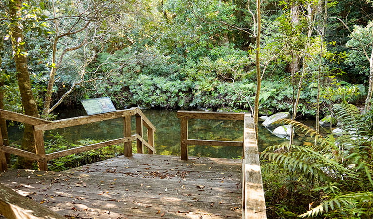 The stairs and informative signage at Coachwood swimming hole in Washpool National Park. Photo: Leah Pippos © DPIE