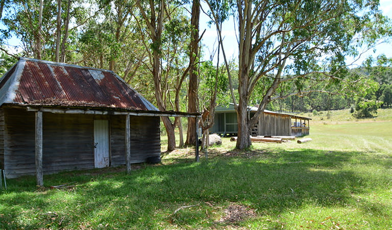 Exterior of Four Bull Hut, Washpool National Park. Photo: Ann Richards/DPIE