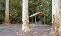 Barbecue shelter, Watagans National Park