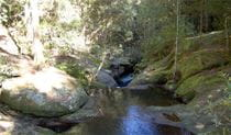 Creek, Watagans National Park
