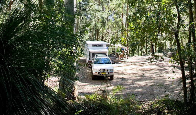 Vehicle camping, Watagans National Park. Photo: Susan Davis/DPIE