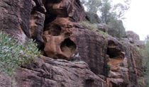 Rock Formations, Berthas Gully Track, Weddin Mountains National Park. Photo: M Cooper/NSW Government