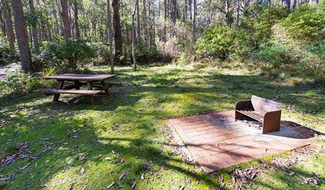 Grassy Cobcroft picnic area with wood barbecue and picnic table, surrounded by tall trees. Photo: John Spencer/DPIE