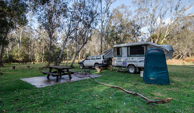Mooraback campground, Werrikimbe National Park. Photo: John Spencer/NSW Government