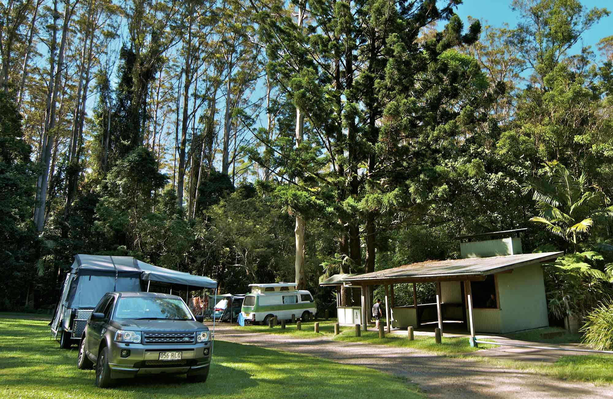 Rummery Park Camping Area, Whian Whian State Conservation Area. Photo: John Spencer/NSW Government