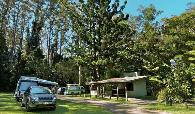 Rummery Park Camping Area, Whian Whian State Conservation Area. Photo/NSW Government