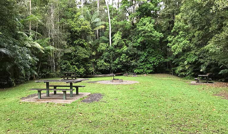 Goanna group camping area at Rummery Park campground. Photo: Andrew Fay/OEH