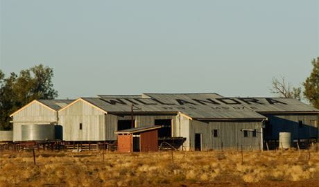 Willandra shearing precinct. Photo: Boris Hlavica