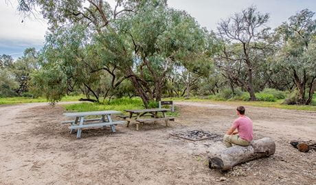 Willandra group campground, Willandra National Park. Photo: John Spencer/NSW Government