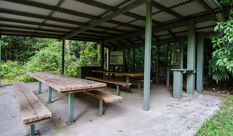 Picnic area, Willi Willi National Park. Photo: John Spencer © DPIE