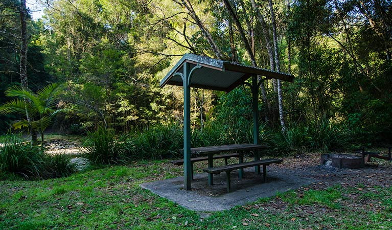 Wilson River picnic area shelter, Willi Willi National Park. Photo: John Spencer