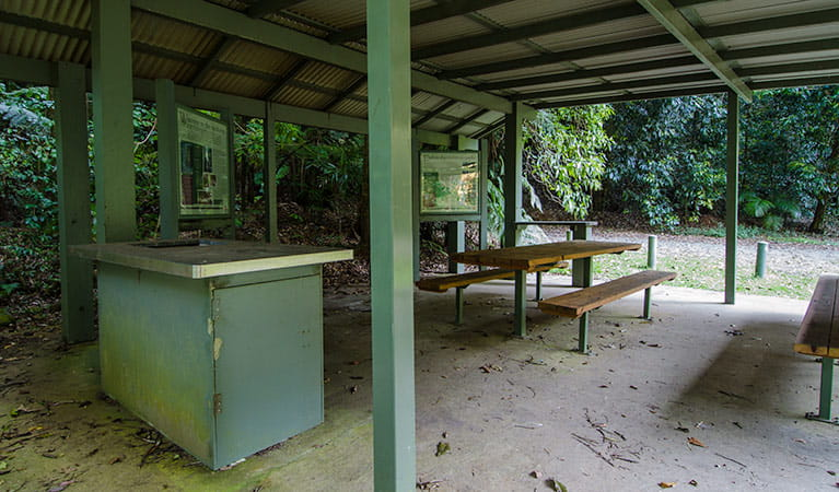 Wilson River picnic area barbecue, Willi Willi National Park. Photo: John Spencer
