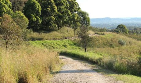 Loop trail, William Howe Regional Park. Photo: John Yurasek
