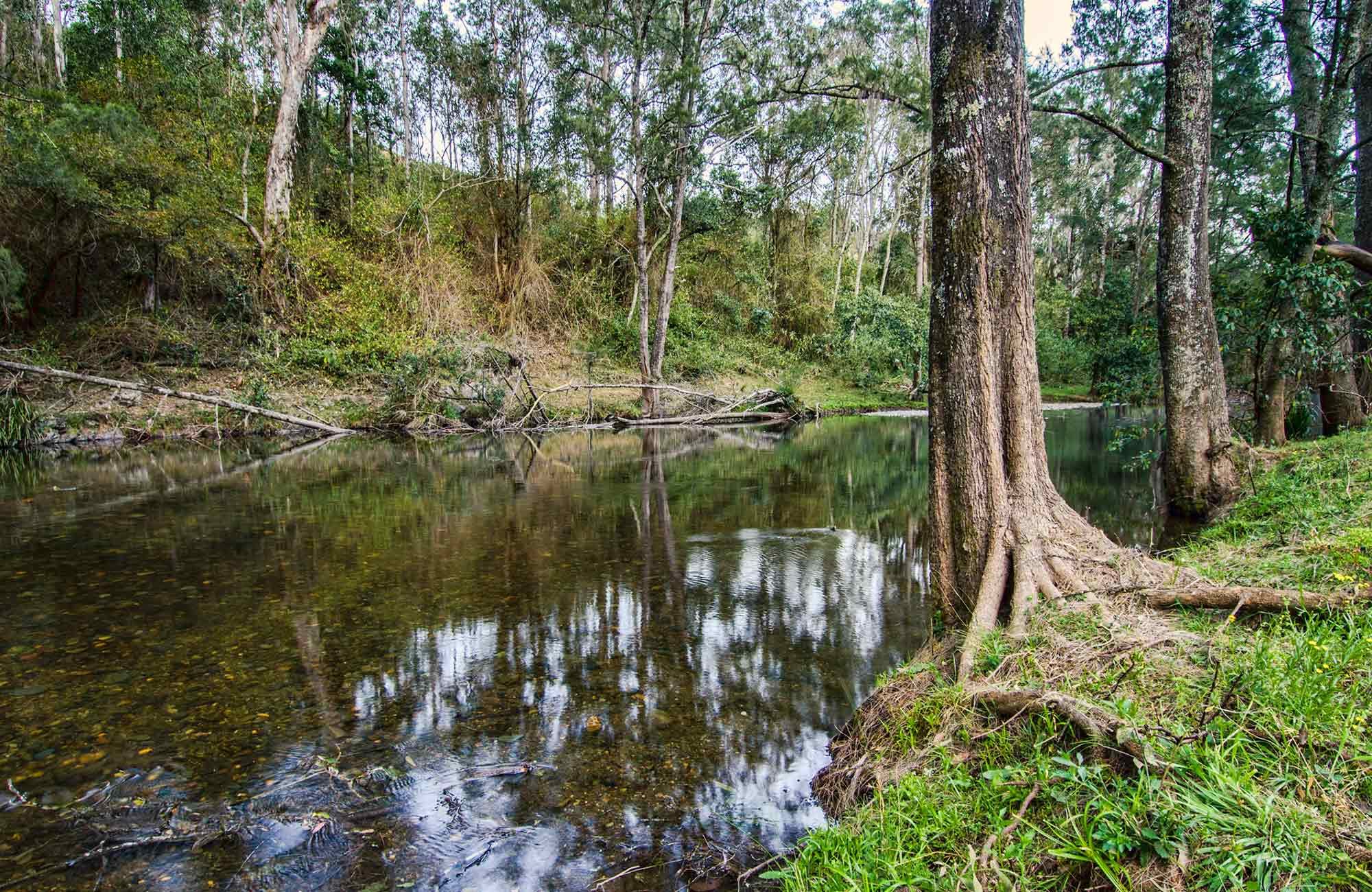 Little Manning river. Photo:John Spencer