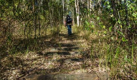Cliff Face track, Woko National Park. Photo: John Spencer/NSW Government