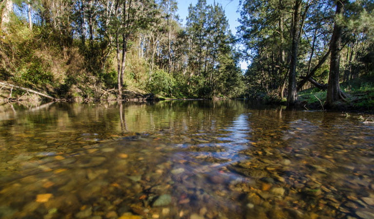 Little Manning River, Woko National Park. Photo: John Spencer/NSW Government