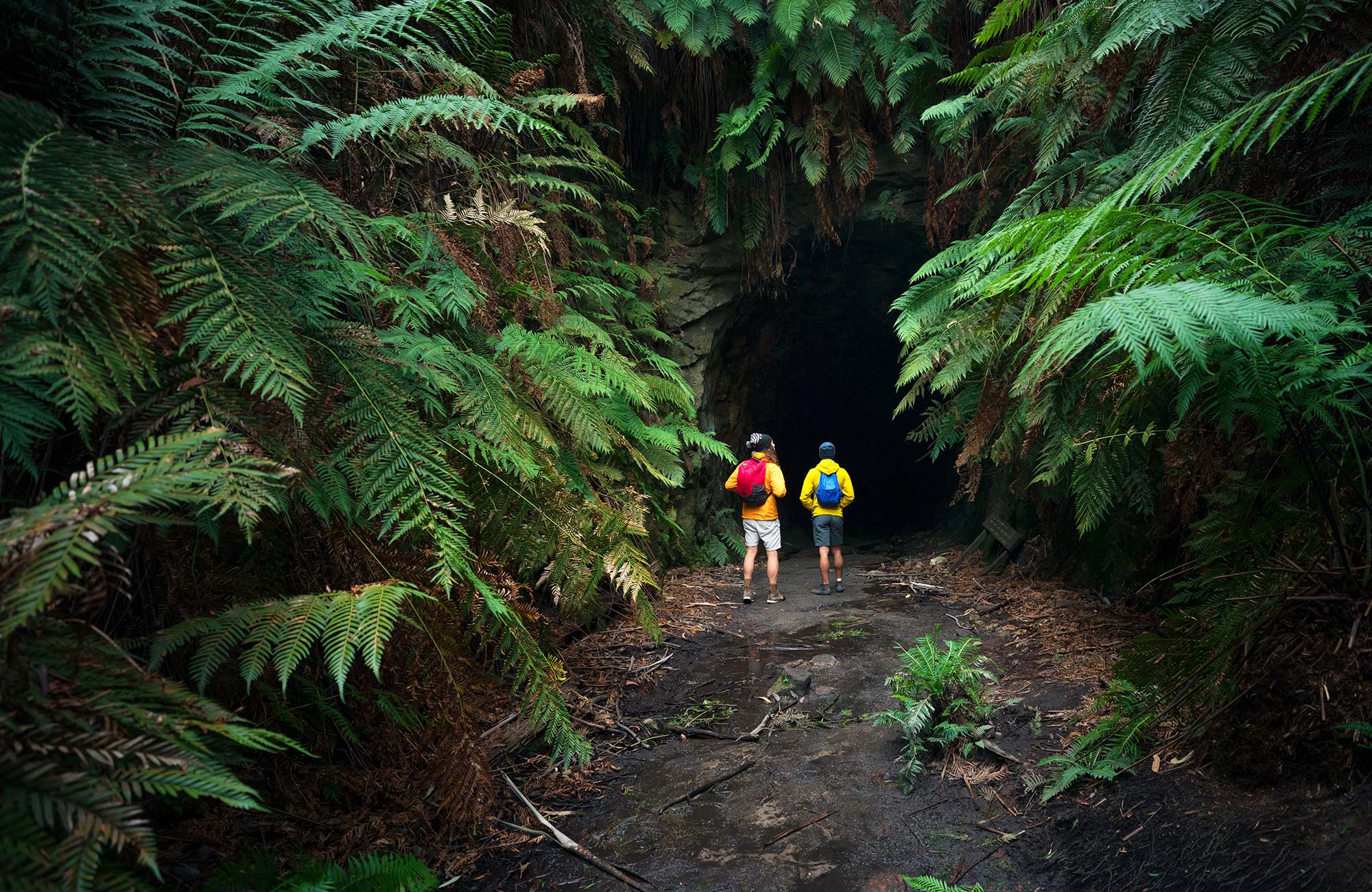 Two walkers at the entrance to Glow Worm Tunnel, Wollemi National Park. Photo: OEH/Daniel Tran.