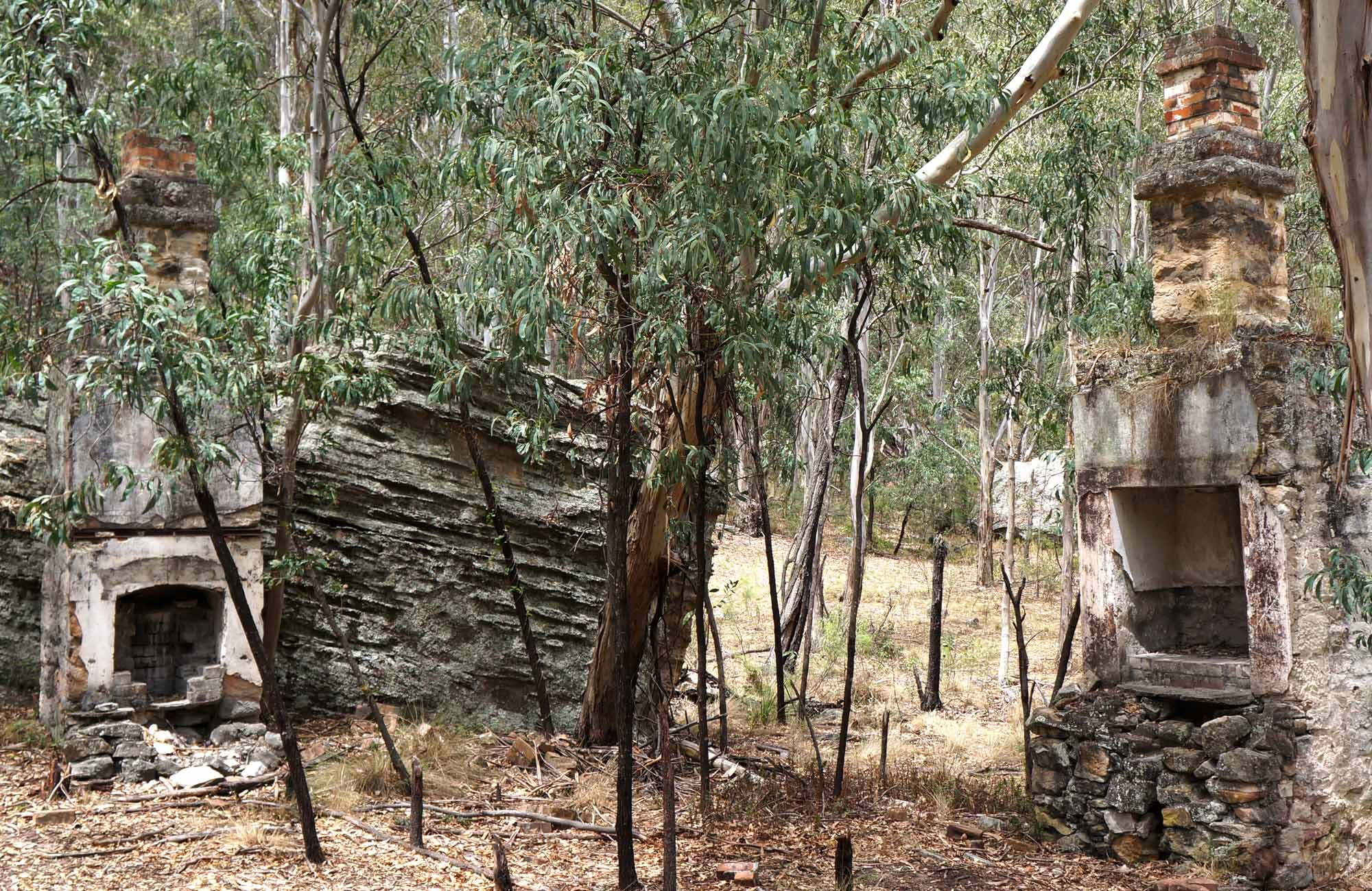 Chimney, Newnes Industrial Ruins, Wollemi National Park. Photo: Steve Alton