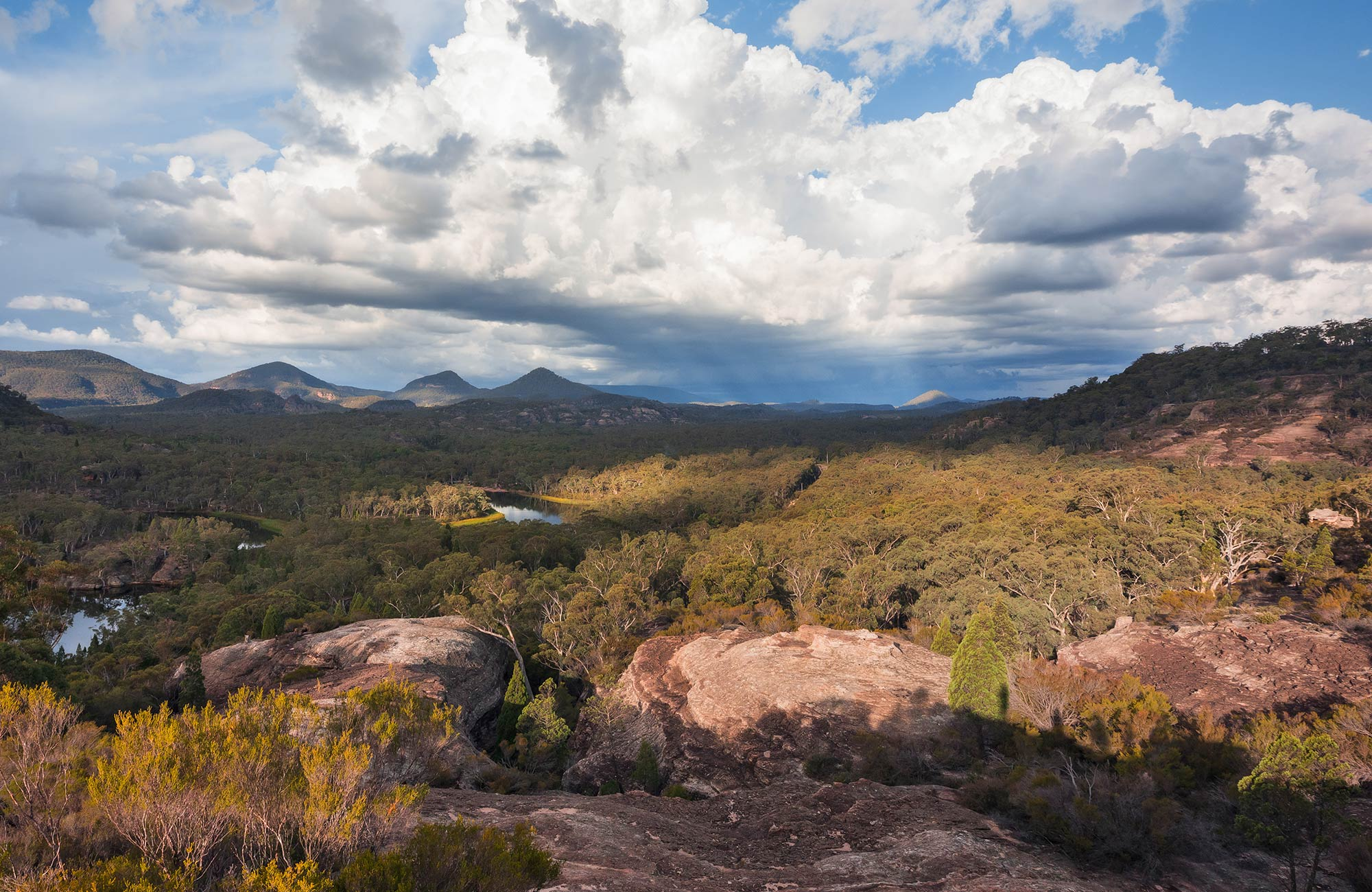 Panoramic views from Pagoda lookout, Wollemi National Park. Photo: Daniel Tran/OEH.