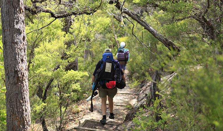Bushwalkers with backpacks on Bob Turners walking track, Wollemi National Park. Photo: Rosie Nicolai.