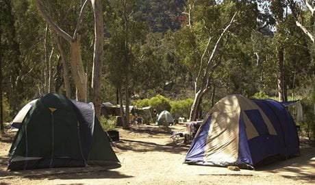 Tents set up in Dunns Swamp - Ganguddy campground, Wollemi National Park. Photo: Steve Garland