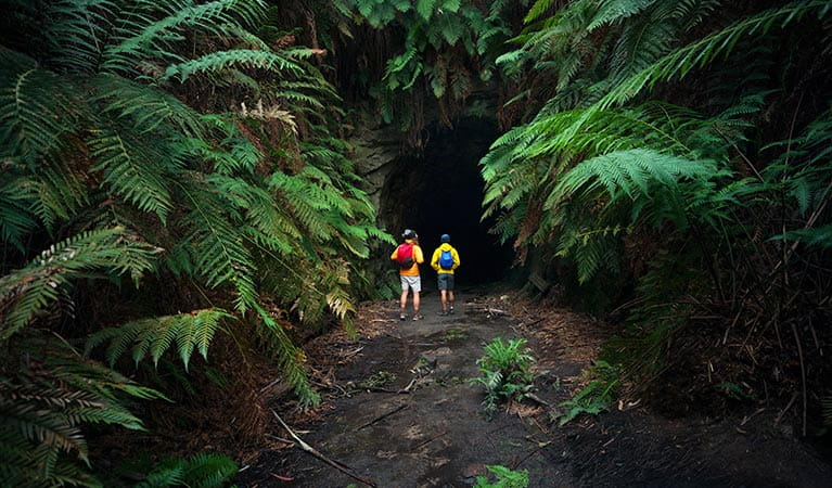Two walkers at the entrance to Glow Worm Tunnel, Wollemi National Park. Photo: Daniel Tran/OEH.