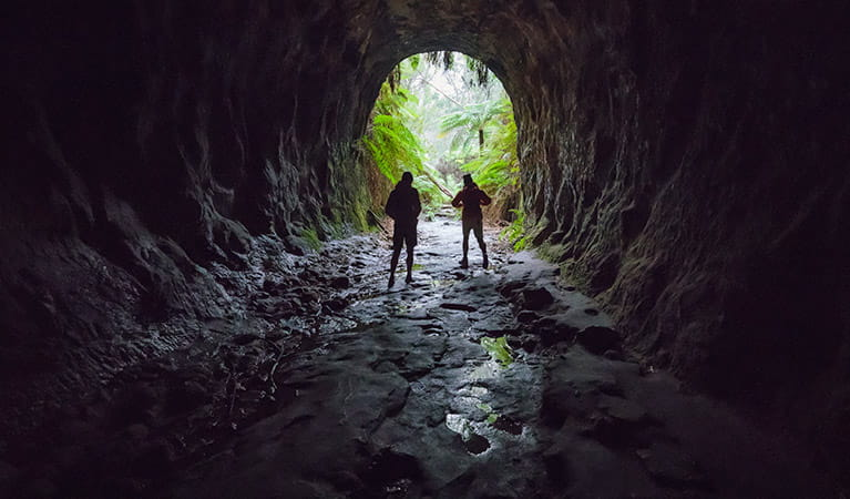 Two men at the entrance of Glow Worm Tunnel, Wollemi National Park. Photo: Daniel Tran/OEH.