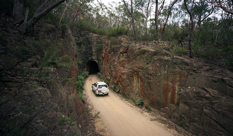 A car drives along Glow Worm Tunnel Road, Wollemi National Park. Photo: Daniel Tran/OEH.