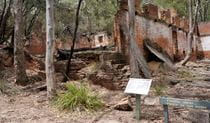 Deserted paraffin sheds, Newnes Industrial Ruins walk, Wollemi National Park. Photo: Steve Alton