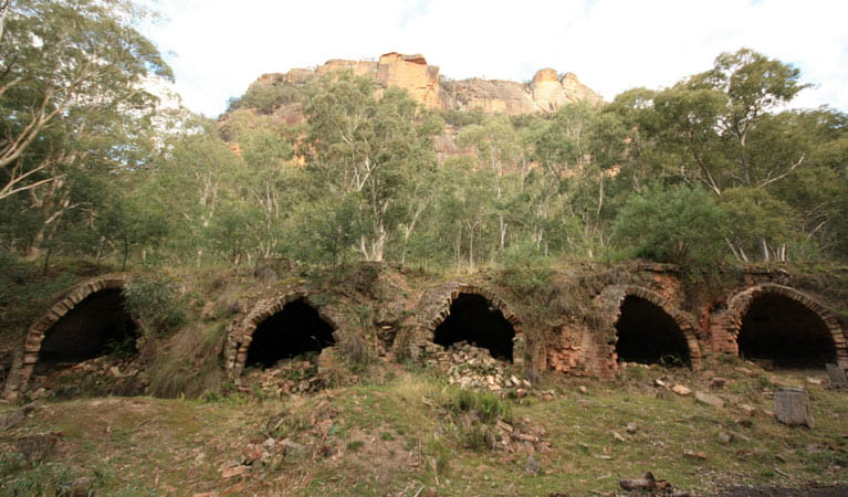 A row of brick kilns at Newnes Industrial Ruins, Wollemi National Park. Photo: Elinor Sheargold